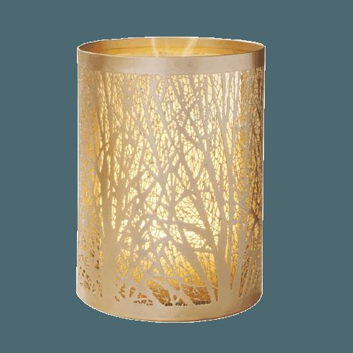 树林——5522